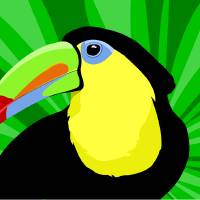 Toucan Art Prints & Posters by Pixel Paint Studio