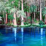 """Ichetucknee springs FL."" by cassiakdkb"