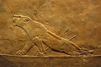 The Wounded Lioness: Masterpiece of  Mesopotamean