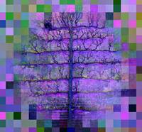The Purple spider gingham tree