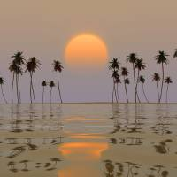 yellow sun over island Art Prints & Posters by Aleksey Tugolukov