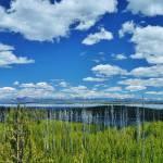 """Duck lake Overlook"" by MikeCramer"
