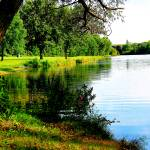 """Saline River"" by patsphotos"