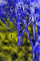 Abstract Snow Trees