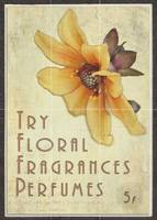 Vintage Colored Perfume Poster