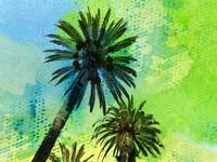 ORL-2048-1 Two palm trees