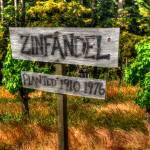 """Zinfandel"" by snapshotsmity"