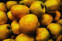 Golden Renaissance Apples