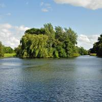 Markeaton Park Lake, Derby  (19580-RDA) Art Prints & Posters by Rod Johnson