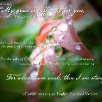 my grace is sufficient Art Prints & Posters by Elizabeth Mix