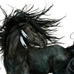 """Friesian - Majestic Horses"" by AmyLynBihrle"