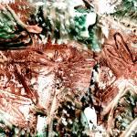 """dragonfly brun imagekind"" by paulyworksfineart"