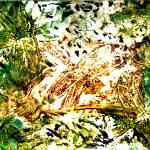 """dragonfly verde imagekind"" by paulyworksfineart"