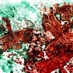 """dragonfly melange imagekind"" by paulyworksfineart"