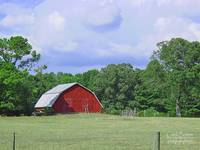 © CBp Red Barn and Blue Sky and Clouds