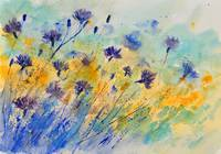 watercolor cornflowers 45