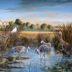Paynes Prairie- Day of the Sandhill Cranes