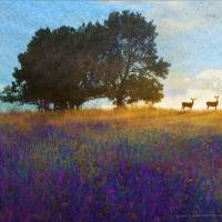 impressions deer on the hill Art Prints & Posters by r christopher vest