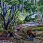 Big Oak Rendezvous- Florida Wildlife