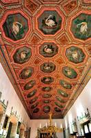 The Swan's Ceiling