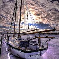 Tall Ship Appledore IV Art Prints & Posters by Craig Sterken