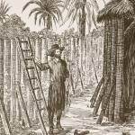 """""""Robinson Crusoe building his bower"""" by fineartmasters"""