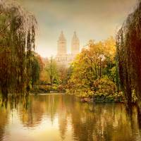 Autumn in Central Park Art Prints & Posters by Jessica Jenney