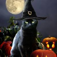 Witchy Halloween Kitty Art Prints & Posters by Gina Femrite