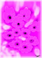 pink white flowers -picsay