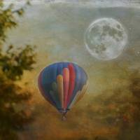 Moonlight Launch Art Prints & Posters by Kathy Rinker