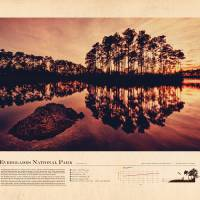 Everglades Art Prints & Posters by Justin Van Genderen