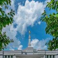 Palmyra Temple Doors Art Prints & Posters by D. Brent Walton