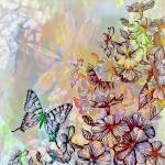 """colorful floral, butterfly and dragonfly"" by lizmix"