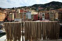 Fishing Nets of Camogli