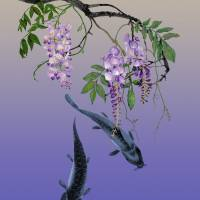 Two Fish Under a Wisteria Tree Art Prints & Posters by I.M. Spadecaller