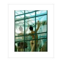 14 0032FL Art Prints & Posters by PETER FELTON