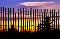 Fenced Sunset