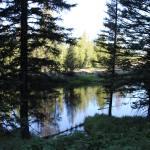 """Still Forest Lake"" by kat_muzic"