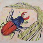 """The measurement of space / stag-beetle"" by federicocortese"