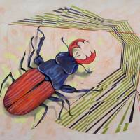The measurement of space / stag-beetle Art Prints & Posters by federico cortese