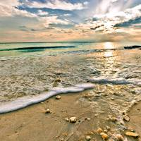Beautiful Beach Sunset Sea Shells on Beach Picture Art Prints & Posters by eszra tanner