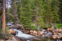 Colorado-Rocky-Mountain-Forest-Stream