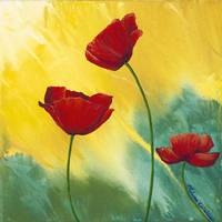 Poppies in Sunlight 12x12