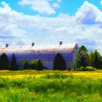 White Barn In The Meadow Art Prints & Posters by MaureenMarie Sundstrom