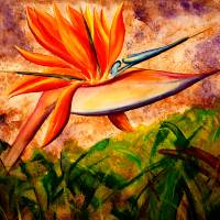 Bird of Paradise Art Prints & Posters by Kris Courtney