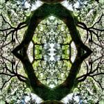 """MIRRORED TREES, V.7, Edit E"" by nawfalnur"