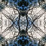 """MIRRORED TREES, V.8, Edit D"" by nawfalnur"