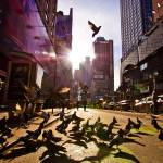 """Taking Flight  NYC"" by EYECBEAUTY"