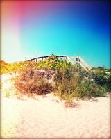 Bridge to Paradise Photography