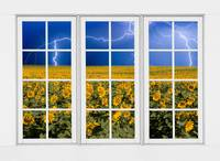 Sunflowers and Lightning View  24 Pane Window